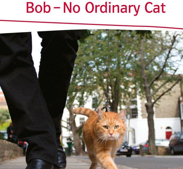 Bob der Streuner ist tot
